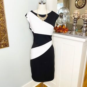 Calvin Klein Black and White Sheath Dress Career